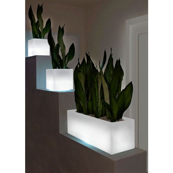 Mini Kube Light Vaso