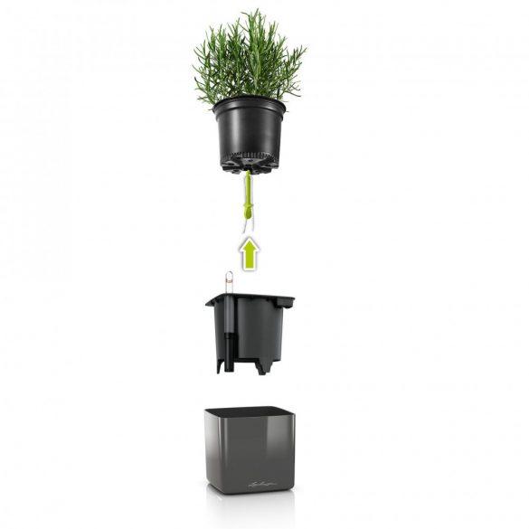 Lechuza Green Wall Home Kit Glossy