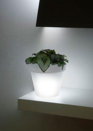 Mini Ikon Light Ø20x17 cm