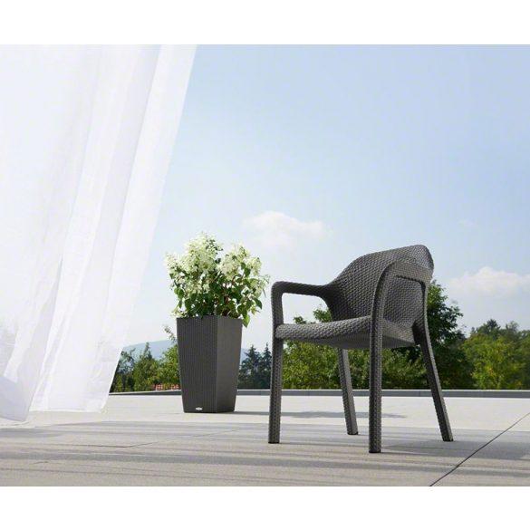 Lechuza szék