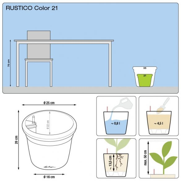 Lechuza Rustico Color All-in-One Set