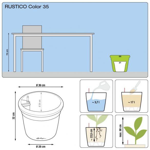Lechuza Rustico Color All-in-One Set
